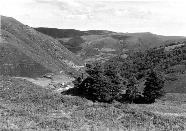 Os pinheiros, Garabandal.